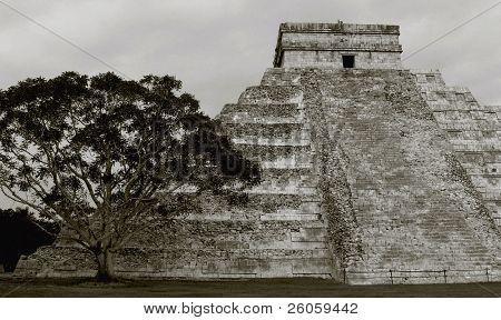ancient aztec  pyramid toned  ptint