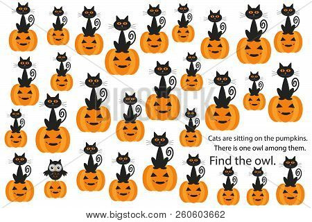 Find Owl Among Cats On Pumpkins, Halloween Fun Education Puzzle Game For Children, Preschool Workshe