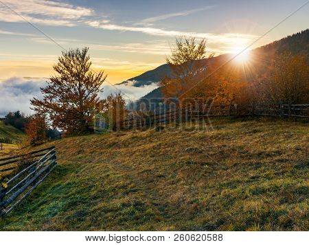 Sunrise In Carpathian Rural Area. Fence And Trees Along The Hill. Cloud Inversion In The Distant Val