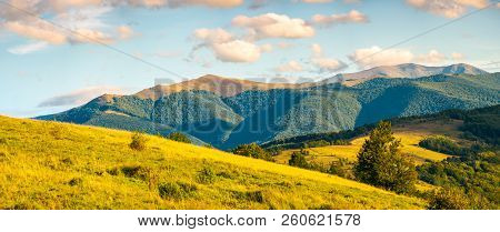 Panorama Of Autumn Countryside With Grassy Rolling Hills. Wonderful Evening Scenery With Beautiful C