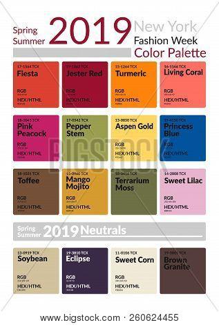 New York Fashion Week Spring Summer 2019 Color Palette. Colors Of The Year. Palette Fashion Colors G