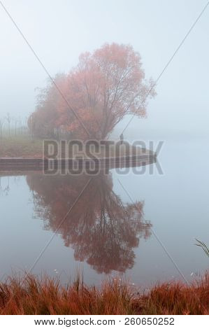 Misty Autumn Gray Landscape With Red Orange Trees And Mirror Reflection In Lake, Vertical Compositio
