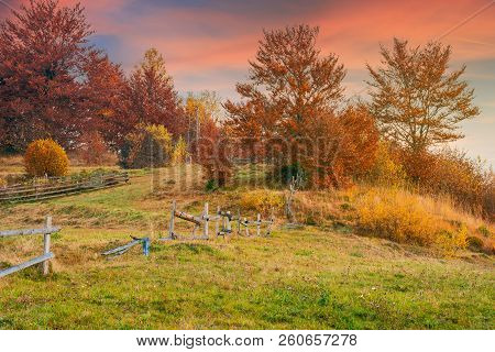 Reddish Sunrise In Autumn Countryside. Lovely Rural Scenery With Wooden Fence Around The Orchard On
