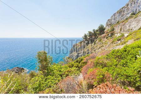 Apulia, Leuca, Italy, Grotto Of Ciolo - Vegetation At The Coastline Of Grotto Ciolo