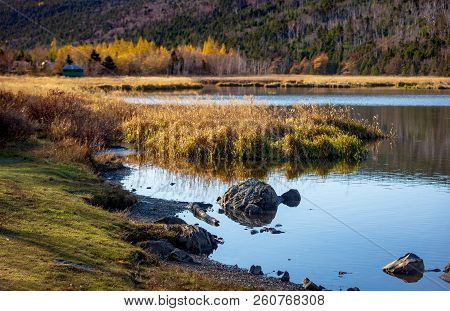 Late Autumn Landscape Of Long Pond, St. John's, Newfoundland And Labrador