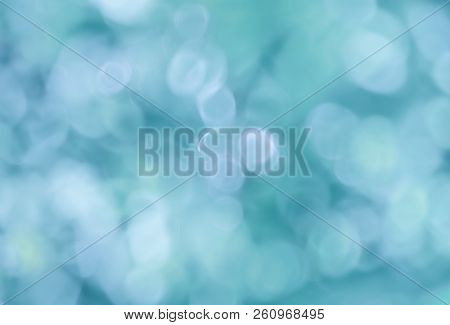 Abstract Blurred Image Of A Spring Garden