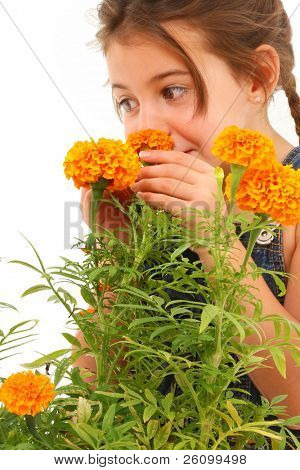 Attractive 5 year french american girl sniffing marigold flower over white background.