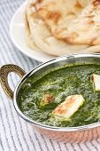 palak paneer , spinach and cheese curry , indian food poster