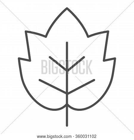 Grape Leaf Thin Line Icon. Wine Leaf Emblem Or Logo Outline Style Pictogram On White Background. Win