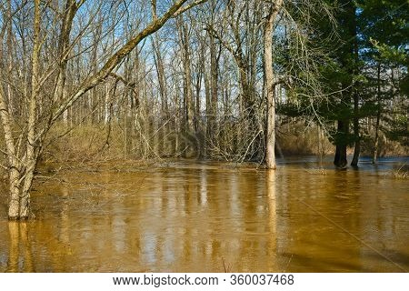 A Creek Overflowing Its Banks In Early Spring After Several Days Of Heavy Rain