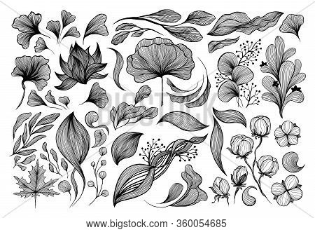 Abstract Waves Black And White Line Art Decoration Set For Wallpaper And Wall Art Design. Use For La