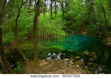 Beautiful pond in the woods, forest lake Ochiul Beiului famous by it's unbelievable color, Caras Severin county,Beusnita National Park, Romania