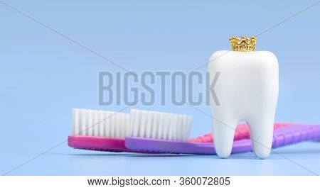 Dental Model And Toothbrush On Blue Background, Concept Image Of Dental Background. Crown. Dental Hy