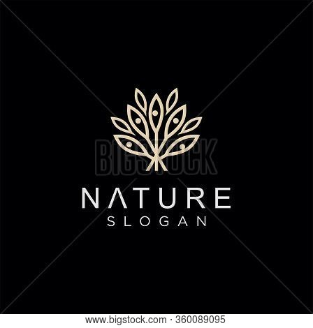 Gold Abstract Luxury Leaf Logo . Golden Leaves Plant Logo Design Vector Template Linear Style. Luxur