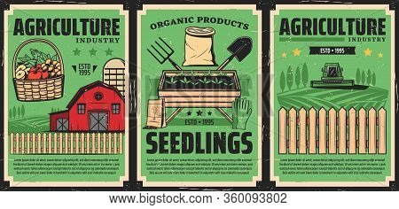 Farming And Agriculture Industry, Farmland Fields Harvesting, Vector Vintage Poster. Farmer Machiner