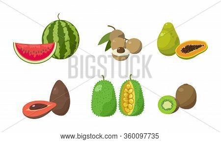 Set Of Sliced Watermelon, Longan, Papaya, Avocados, Jackfruit, Kiwi. Vector Illustration In Flat Car