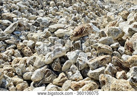 Natural Gray Gypsum Stones. Gypsum Stone Is A Soft Sulfate Mineral Composed Of Calcium Sulfate Dihyd