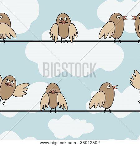 Birds-siting