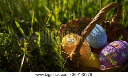 Colorful Easter Eggs In Basket Hiding In The Green Grass. Happy Easter Time, Spring Holidays. Easter
