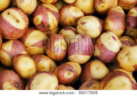 Potatoes at a farmers' market