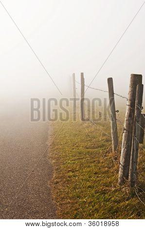 Descending Fog In Autumn