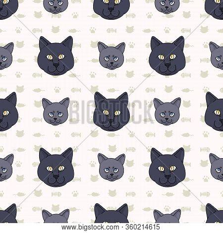 Cute Cartoon British Shorthair Cat And Kitten Face Seamless Vector Pattern. Pedigree Kitty Breed Dom