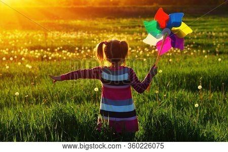 Girl in the sunlight in the field