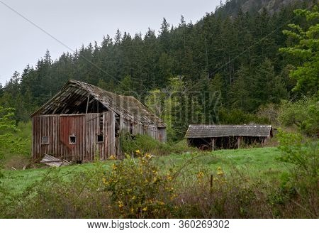 Pacific Northwest Barn Ruin. A Weathered Barn Collapsing In The Pacific Northwest. United States.