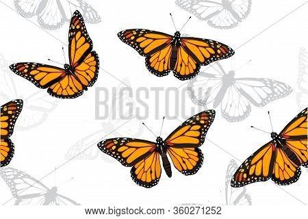 Monarch Butterfly Set Seamless Vector Pattern Illustration