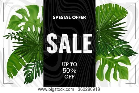 Striped Background For Summer Sale.tropical Summer Sale Poster. Green Tropical Leaves On A Striped B