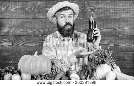 Man With Beard Wooden Background. Farmer With Organic Vegetables. Excellent Quality Harvest. Grow Or