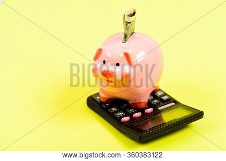 Money Savings. Economics And Finance. Piggy Bank Pink Pig Stuffed Dollar Banknote And Calculator. Fi
