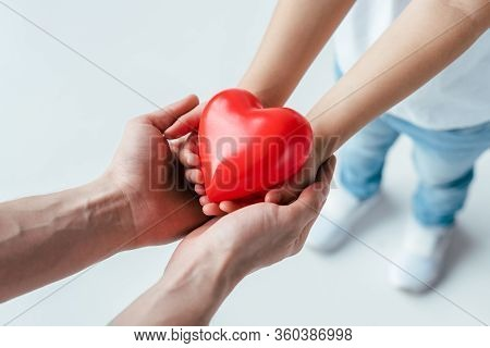 Cropped View Of Adopted Child And Parent Holding Red Heart On White