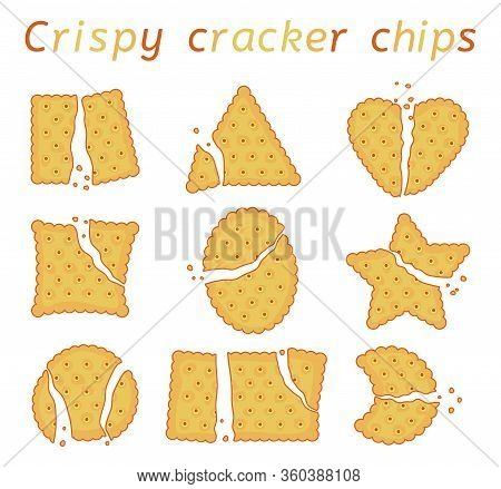 Vector Set Of Baked Cracker Chips With Wavy Edges. Top View Of Cheese Crackers Of Different Shapes: