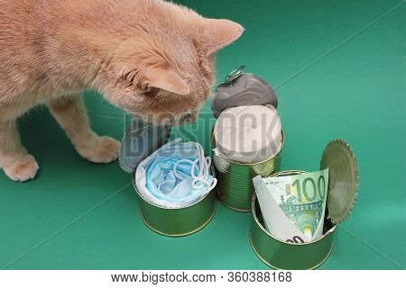 A Red Cat Looks Into Open Metal Cans With Medical Masks, Toilet Paper, And A 100-euro Bill. Concept