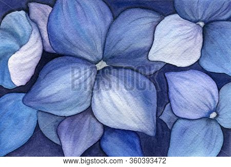Watercolor Floral Background With Blue Hydrangeas Flowers, Beautiful Floral Painting With Realistic