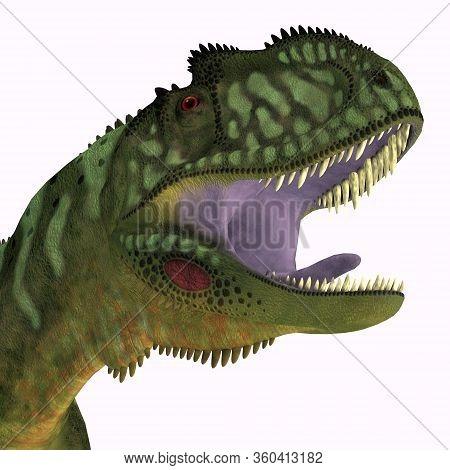 Yangchuanosaurus Dinosaur Head 3d Illustration - Yangchuanosaurus Was A Carnivorous Theropod Dinosau