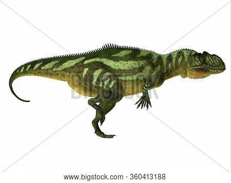 Yangchuanosaurus Dinosaur Side Profile 3d Illustration - Yangchuanosaurus Was A Carnivorous Theropod