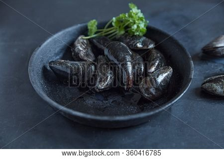 Bowl with fresh live mussels