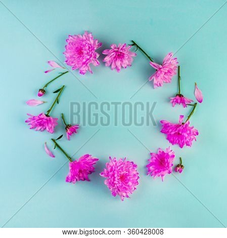 Purple Chrysanthemum Flowers Round Border Flat Lay On Biscay Green Background. Vibrant Blooming Top