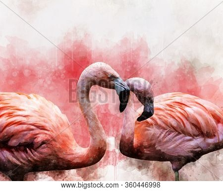 Portrait Of Two Flamingos, Watercolor Painting. Red Flamingos (phoenicopterus Ruber), Zoological Ill