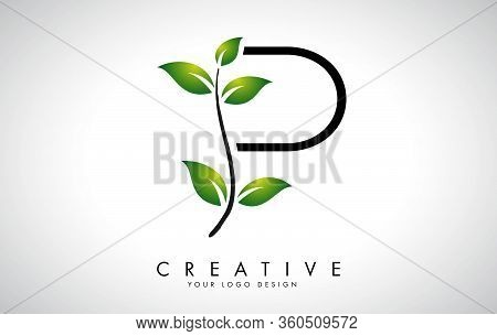 Leaf Letter P Logo Design With Green Leaves On A Branch. Letter P With Nature Concept. Eco And Organ