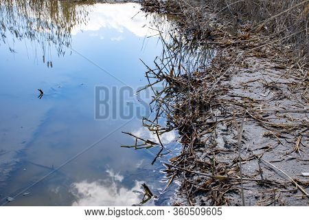 Swamp, Sky Reflected In Swampy Mud, Sky Background In Swamp.