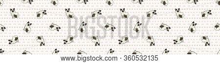 Cute Cartoon Ragdoll Kitten Seamless Border Pattern. Pedigree Kitty Breed Domestic Kitty Background.