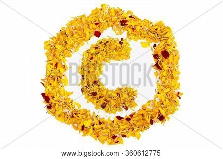 Letter C In Spring Flower Petal Hexagon. Marigold Petal Alphabet Isolated On White Background.