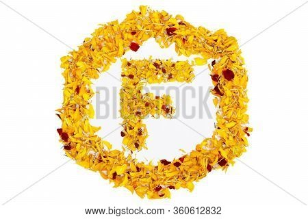 Letter F In Spring Flower Petal Hexagon. Marigold Petal Alphabet Isolated On White Background.