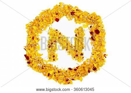 Letter N In Spring Flower Petal Hexagon. Marigold Petal Alphabet Isolated On White Background.