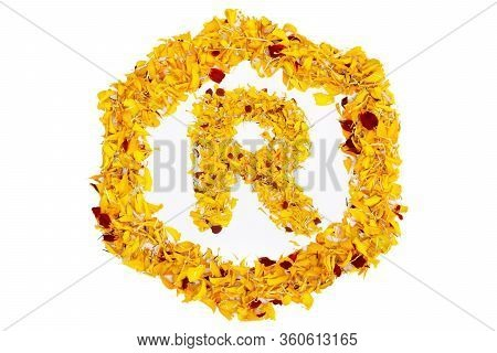 Letter R In Spring Flower Petal Hexagon. Marigold Petal Alphabet Isolated On White Background.