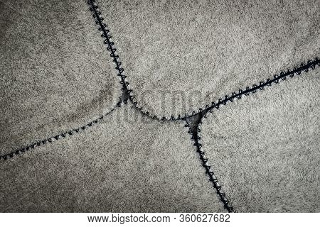 Gray Spathe Folded In An Envelope With Blue Threading Edges With Black Vignette. Close-up Of Natural