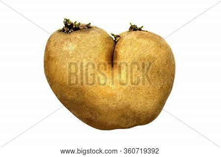 Ugly Potato In Heart Shape Isolated On White Background. Funny, Weird Vegetable. Food Waste And Ugly